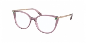 BV4196 5491 TRANSPARENT DARK PURPLE