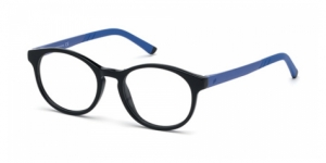 WEB EYEWEAR WE5270 005