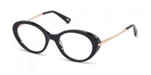 WEB EYEWEAR WE5302 005