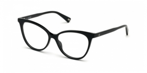 WEB EYEWEAR WE5313 001